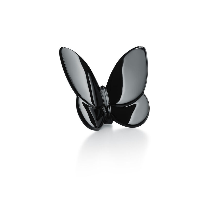 Papillon Lucky Butterfly, large