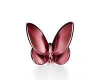 Lucky Butterfly, small
